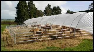 getlinkyoutube.com-FlexiTunnel Calf Rearing System