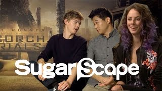 getlinkyoutube.com-The Scorch Trials cast take the Sugarscape Zombie Invasion Survival Test