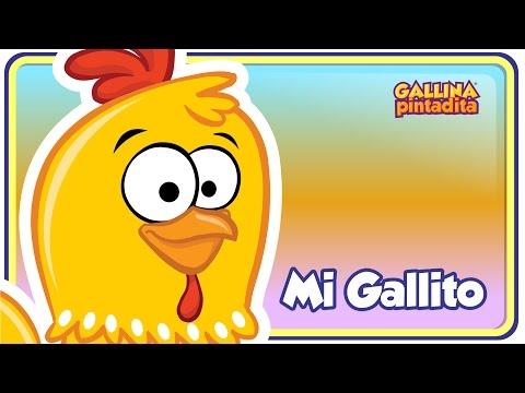 MI GALLITO - Gallina Pintadita OFICIAL - Español