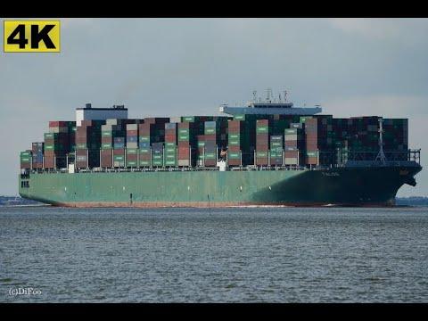 Click to view video TALOS - IMO 9728930 - Germany - River Elbe - Otterndorf - 4K VIDEO 👍🏻