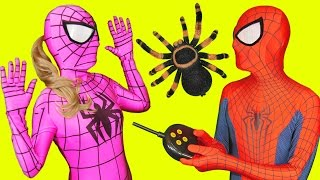 getlinkyoutube.com-Pink Spidergirl Spider Prank with Spiderman in Real Life Fun