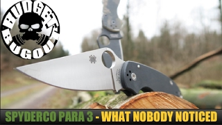 I'm Not Sure Why Nobody Noticed This... The Spyderco Para 3 (Paramilitary 3) vs Paramilitary 2 Knife