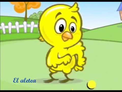Mi pollito amarillito