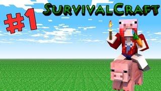 getlinkyoutube.com-SurvivalCraft # 1 เอาชีวิตรอดคนเดียวในคืนแรก (เกมส์มือถือ)