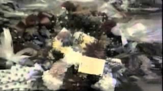 getlinkyoutube.com-Zoroastrian Priests at Freddie Mercury's Funeral