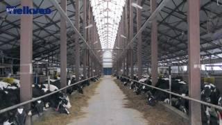 getlinkyoutube.com-Gigantische melkbedrijven in Rusland