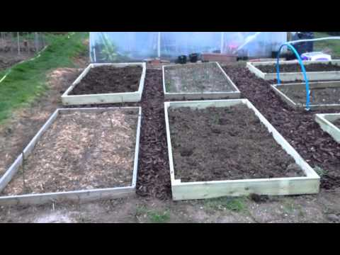 Raised beds: Mark's Sussex Allotment Ep 22