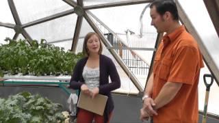 getlinkyoutube.com-Aquaponics in a Growing Dome