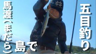 馬渡島(まだら島)で五目釣り!【釣りよかでしょう】