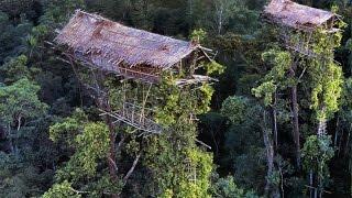 getlinkyoutube.com-Begini Kehidupan SukuKanibal Pemakan Manusia di Pedalaman Papua - Keajaiban Dunia Nyata
