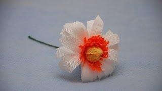 getlinkyoutube.com-Ромашка для букета из конфет. Matricaria of sweet