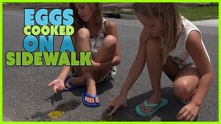 getlinkyoutube.com-HOW TO COOK EGGS ON THE SIDEWALK | WE ANSWER THAT EP. 34!  SMELLY BELLY TV