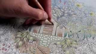 getlinkyoutube.com-Colouring Secret Garden - Approaching thunderstorm on a summer's day