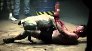 getlinkyoutube.com-( رعب ) رجل يقاتل كلب حتى الموت