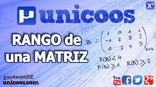 Imagen en miniatura para RANGO de una matriz por determinantes 02