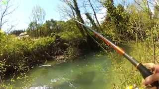 getlinkyoutube.com-Moments de pêche (Ouverture Truite / Sorgues 2015)