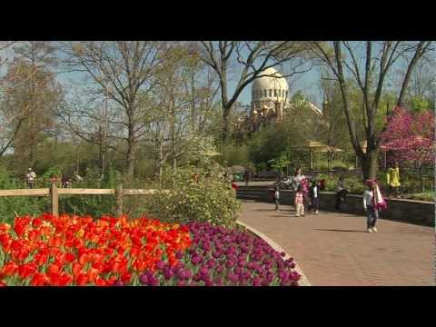 Zoo Blooms - The Cincinnati Zoo & Botanical Garden