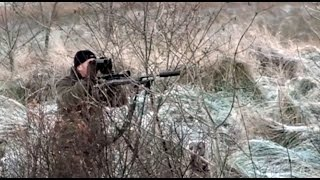 getlinkyoutube.com-The Shooting Show - frosty roe stalking with Chris Dalton
