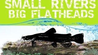 getlinkyoutube.com-Small Rivers Big Flatheads