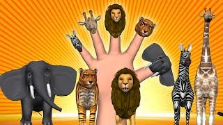 getlinkyoutube.com-Animal Finger Family - Finger Family Song - 3D Animation Nursery Rhymes & Songs for Children