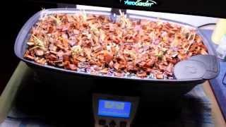 getlinkyoutube.com-AeroGarden Ultra LED with Strawberry Grow Bowl Conversion Kit