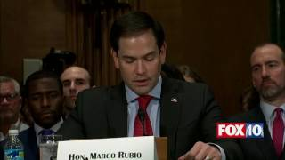 getlinkyoutube.com-WOW: Marco Rubio Praises FORMER RIVAL Ben Carson at HUD Secretary Confirmation Hearing