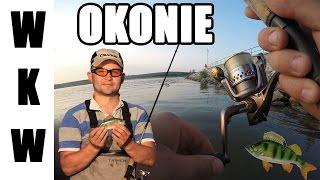 getlinkyoutube.com-Okonie - prosto i skutecznie | Łowienie okoni | Wędkarstwo Spinningowe | Odcinek 2