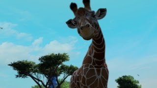 getlinkyoutube.com-ZOO TYCOON - EPISODIO 6 - JIRAFAS PRECIOSAS!