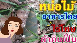 getlinkyoutube.com-หน่อไม้ อาหารไทยไร้โทษ ถ้ากินเป็น