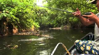 getlinkyoutube.com-Papuan Black Bass Fishing part-2 with Gong Lei
