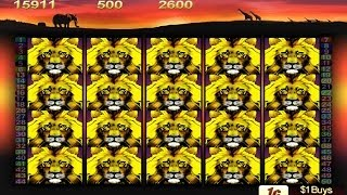 getlinkyoutube.com-50 Lions Pokie Machine - Doubled the Free Spins! (and won this time)