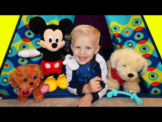 Georgie Puppy & Mickey Mouse Playtime