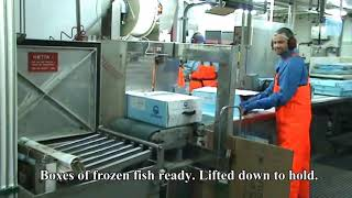 getlinkyoutube.com-Fishing and processing on a freezing trawler.