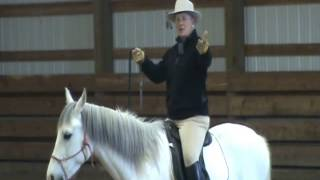 getlinkyoutube.com-Riding in the Halter - One Rein
