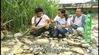 getlinkyoutube.com-台灣尚青_冰涼臭豆腐_台中雞爪凍_蛇肉料理_當時廣告回顧_20101121