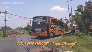 getlinkyoutube.com-Parade Klakson Telolet 6 Unit Bus Agam Tungga Jaya Bonus Subur Jaya SHD Toscano