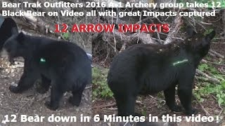getlinkyoutube.com-12 Bear arrowed in 6 minute @ Bear Trak Outfitters 2016 Bow Only ARROW IMPACT Compilation
