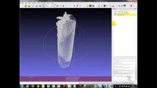 Point cloud » 3D model