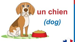 getlinkyoutube.com-French Lesson 58 - ANIMALS in French Vocabulary - LES ANIMAUX chanson pour enfants song for children
