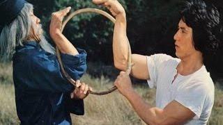 La serpiente a la sombra del aguila - Jackie Chan width=