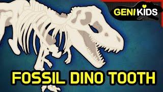 무시무시한 공룡의 이빨 화석 파헤치기 ★지니키즈 공룡