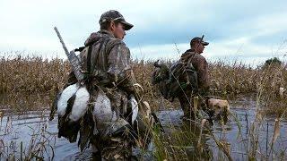 getlinkyoutube.com-Flooded Corn Duck Hunt & Iowa Goose Hunting | Cabela's Northern Flight