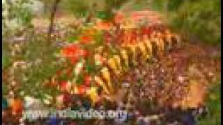getlinkyoutube.com-Thrissur Pooram temple festival Thrissur Kerala
