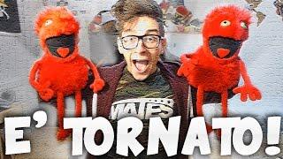 WILSON E' TORNATO!!