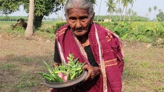 My 105 Years Grandma's Yummy Tasty Lady's Finger Recipe | Bendakaya Pulusu  | Country Foods