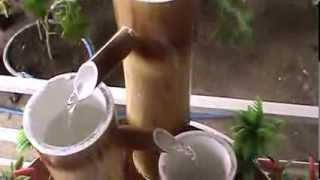 getlinkyoutube.com-Fonte de Bambu para decoração de ambientes abertos e fechados