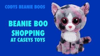 getlinkyoutube.com-Beanie Boo Shopping   Codys Beanie Boos