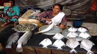 Fish shopping at Targhar  ( video 2 ) , near New Mumbai :