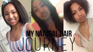 getlinkyoutube.com-My Natural Hair Journey | 3c/4a/4b Hair