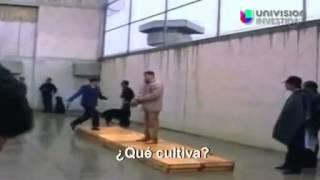 getlinkyoutube.com-Entrevista a el Chapo Guzman En 1993 (Resuvido - 2014)